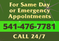Same day or emergency dental appointments